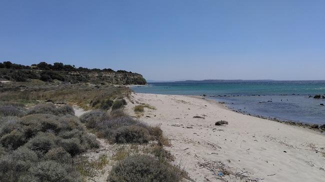 Tekke Koyu Plajı